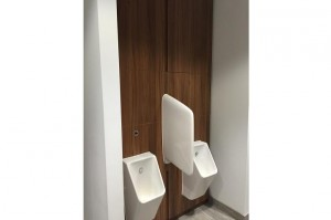 office toilet IPS panels